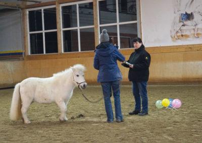coaching-pferd-betina-strohm-kunde
